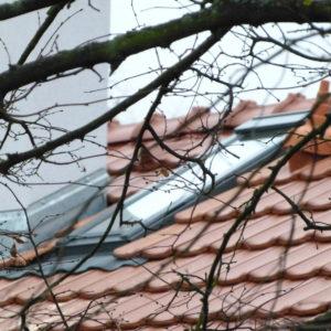 také na idylické foto s novou střechou zbyl čas ...