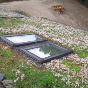 zelená střecha z předpěstovaných koberců